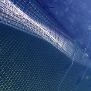Underwater Gopro.Still008